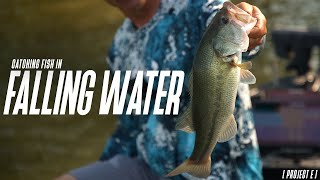 Catching fish in FALLING WATER! // Project E