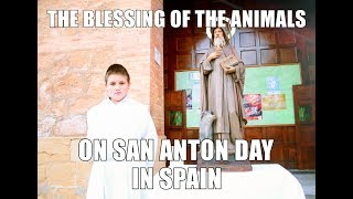 The Blessing of the Animals on San Anton Day in Spain