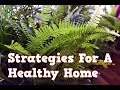 Strategies For A Healthier Home