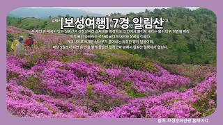 [보성여행] 7경 자연의 향기와 철쭉 일림산