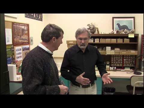 Illinois Stories | State Museum 3 D Printer | WSEC-TV/PBS Springfield
