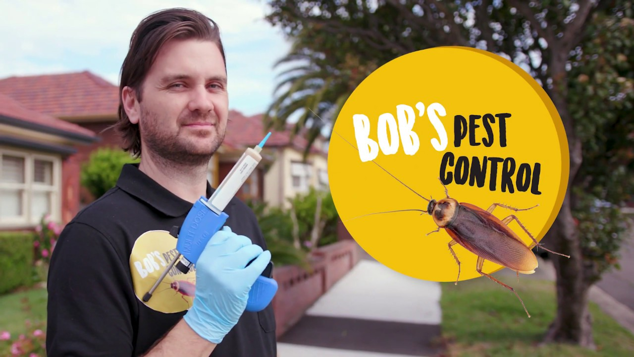 Mega Marketing Tips from Bob's Pest Control