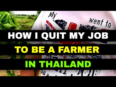 How I Quit My Job To Become A Farmer In Thailand