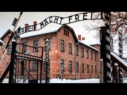 91-Year-Old Woman Charged Over 260,000 Auschwitz Deaths
