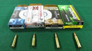 Детальный Обзор- Ружейные Калибры популярные в США