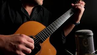 The Sound Of D'Addario XT 13 to 56 Strings on a Lowden F25C