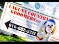Pet Groomer Near Me Elk Grove CA  - Call: 916-682-2211