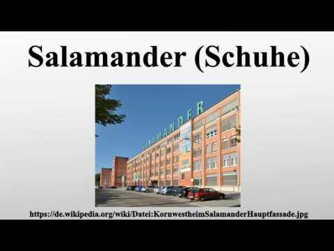 the best attitude b3815 e3c30 Salamander (Schuhe) - YouTube