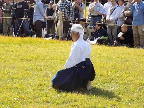 Japanese Martial Arts   Meiji Shrine 2014