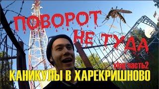 Опасность в лесу/ Авторские песни/ Советы для мужиков