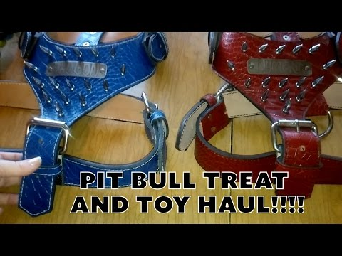 Dog Toy/Treat Haul Plus Nice Leather Harnesses!! - NyiDro Bloodlines