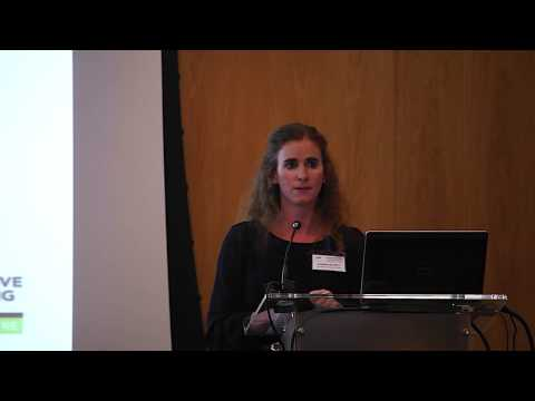 Structuring SIBs in partnership with the Government of South Africa - Susan de Witt