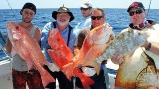 Hardline fishing!!  4 Way Hookup, Part 3, Great Barrier Reef!! Thumbnail
