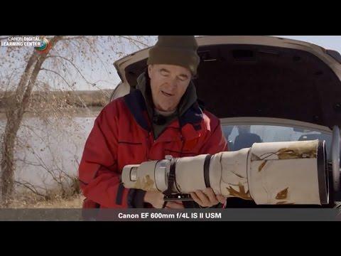 Canon: Bird Photography with Arthur Morris: Arthur's Gear Bag