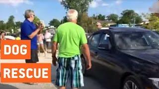 فيديو.. رجل يكسر زجاج سيارة