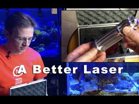 Powerful Laser for Aiptasia Removal in a Reef Tank