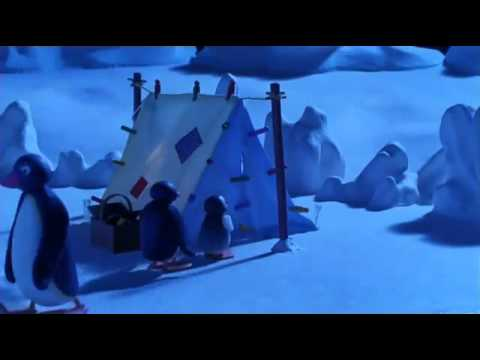 Pingu goes camping