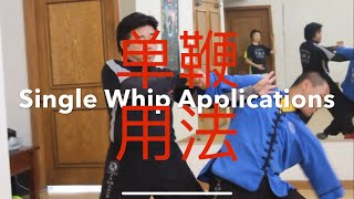 Tai Chi Wu Hao Single Whip Applications 单鞭用法 by Master Jimmy Wong