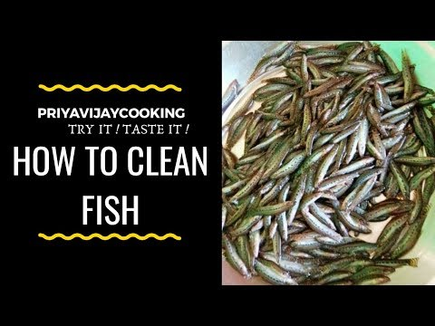 Ayirai Meen cleaning | How to clean Ayirai Meen