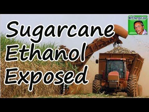Sugarcane Ethanol Exposed
