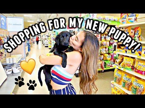 NEW PUPPY VLOG! Shopping for my new black lab puppy, Lola!