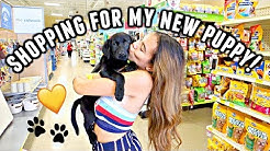 NEW PUPPY VLOG! Shopping for my new black lab puppy, Lola!