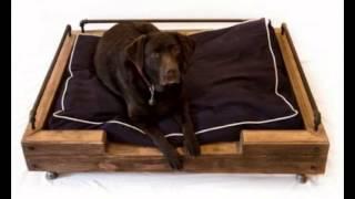 Лежанки для собак в спб