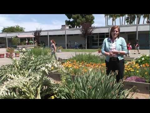 Orange County Green School Renovation: Davis Magnet School, Costa Mesa