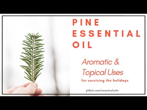 pine-essential-oil