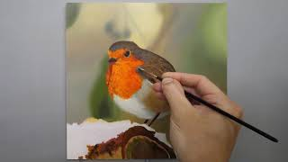Painting a Robin   Time Lapse   Episode 153