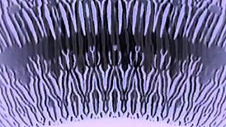 Herb Diamante & Master Musicians of Bukkake - The Lady Rachel