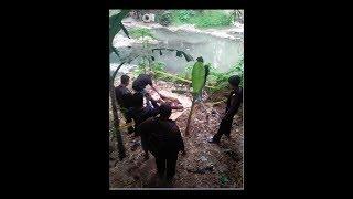 Download Video NGERI...!!! Bocah 10 Tahun Diperkosa & Dibuang ke Sungai Winongo MP3 3GP MP4