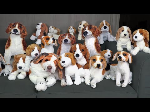 Can You Find the Real Dog? Funny Dog Maymo vs Fake Dogs Challenge