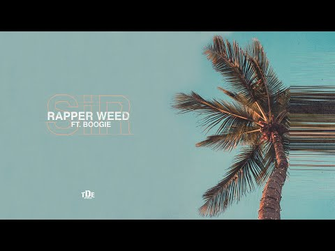 SiR - Rapper Weed ft. Boogie from YouTube · Duration:  2 minutes 41 seconds