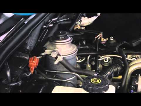 Diesel Fuel Filter Replacement - Nissan Navara