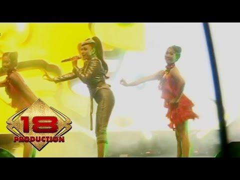 Chintya Sari - Satu Jam Saja (Live Konser Lampung 7 Februari 2014)
