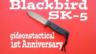 Ontario Blackbird SK-5 Knife Review: The Blade That Started It All