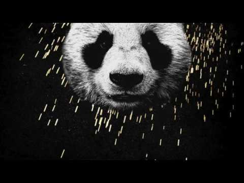 Desiigner - Panda (Lyrics)