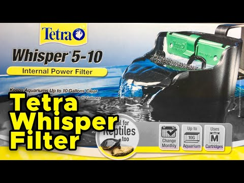 Tetra Whisper Filter |Enhancement And Review|