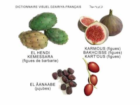 Assez EL FEKYA en Algérien - YouTube MF47