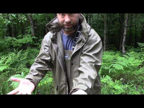 Helly Hansen Impertech Rain Gear Review
