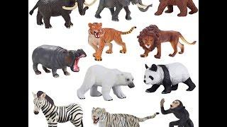 дикие животные часть 2 развивающие уроки