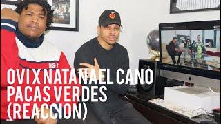 Ovi x Natanael Cano Pacas Verdes (reaccion)