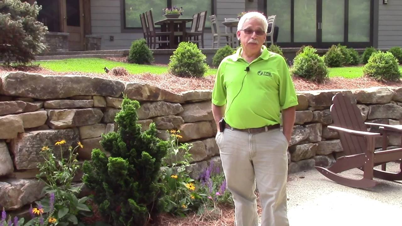 low maintenance landscape by tps landscaping youtube