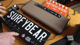 Surfy Industries: SURFYBEAR REVERB - CLASSIC | METAL | COMPACT