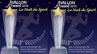 La Nuit du sport à Avallon (89)