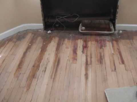 SAND U0026 REFINISH OLD WOOD FLOORS.wmv