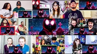 SPIDER-MAN: INTO THE SPIDER-VERSE - Official Teaser Trailer Reactions Mashup