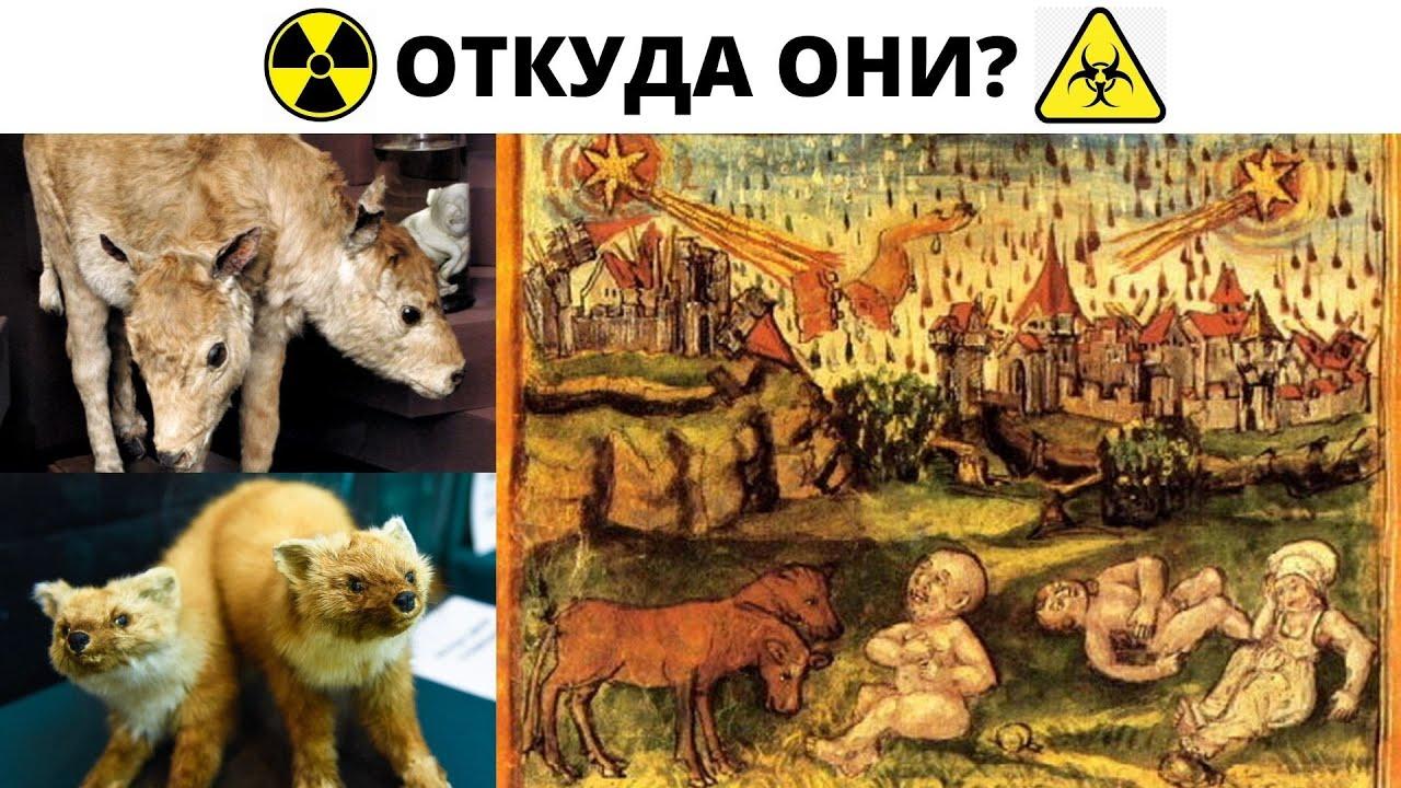Откуда ядерные мутанты 17-18 века ? От взрыва керосиновой лампы ?