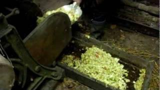 Cider making pt 2.AVI
